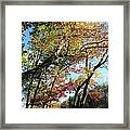 a rainbow of colors in CT Framed Print
