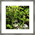 A Smile In A Clover Forest Framed Print