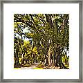 A Stroll Through Time Framed Print