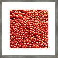 A Variety Of Fresh Tomatoes - 5d17833 Framed Print