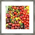 A Variety Of Fresh Tomatoes And Celeries - 5d17901 Framed Print