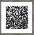 A Virus Has Spread Framed Print by Mark Stevenson