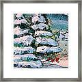 A Winter Feast Framed Print