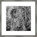 Abs 0284 Framed Print
