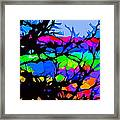 Abstract 174 Framed Print