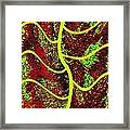 Abstract Fusion 120 Framed Print
