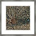 Abstract Grass Framed Print