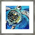 Abstract Sea Turtle In C Minor Framed Print