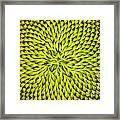 Abstract Sunflower Pattern Framed Print