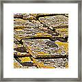 Aged Roof Tiles Of Tuscany Framed Print