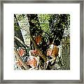 All My Horses Live In Trees Framed Print