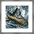Alligator Eating Fish Framed Print