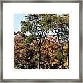 An Autumn Day Framed Print