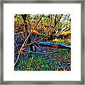 Andy River 13 Framed Print