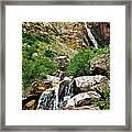 Apikuni Falls Framed Print