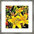 Asiatics In May  Framed Print
