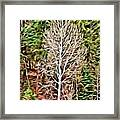 Aspen Tree On A Forest Road Framed Print