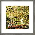 Attack Of The Moss Framed Print