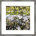 August Reflections Framed Print