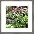Aunt Christy's Garden Framed Print by Jennifer Compton