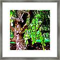 Autograph Tree Framed Print