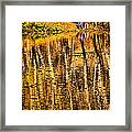 Autumn - 2 Framed Print
