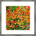 Autumn Abstract Painterly Framed Print