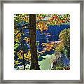 Autumn At Letchworth State Park Framed Print