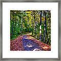 Adirondack Color 53 Framed Print