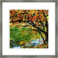 Autumn Colors 2 Framed Print