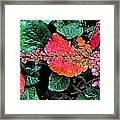 Autumn Composition One Framed Print