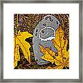 Autumn Ladybugs Framed Print