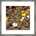 Autumn Leaves On Straw On Water Framed Print