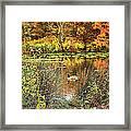 Autumn On Long Island Framed Print