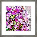 Autumn Purple II Framed Print