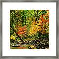 Autumn Reflects Framed Print