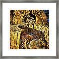 Autumn Rusticana Framed Print