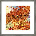 Autumns Gold Great Smoky Mountains Framed Print by Rich Franco