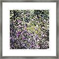 Azaleas In The Forest Framed Print