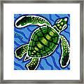 Baby Green Sea Turtle Framed Print