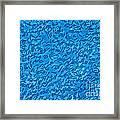 Bacillus Subtilis Framed Print