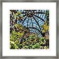 Balboa Park Botanical Gardens Framed Print