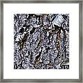 Bark Framed Print