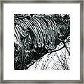 Barking Up At The Sky Framed Print