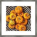 Basket Full Of Small Pumpkins Framed Print