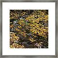 Beautiful Vermont Scenery 28 Framed Print
