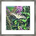 Beauty In Nature Framed Print