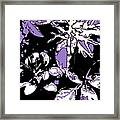 Bee Flowers 13 Framed Print