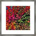 Begonia Leaf On Acid Framed Print