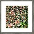 Black With Orange Dots Butterfly Framed Print